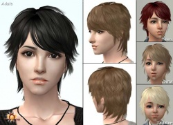 Raonsims M PayHair 16.jpg