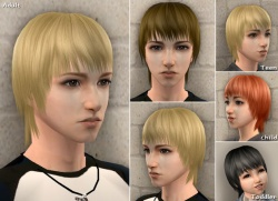 Raonsims M FreeHair 11.jpg