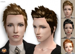 Raonsims M PayHair 18.jpg