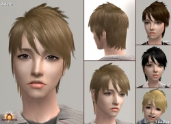 Raonsims M PayHair 17.jpg
